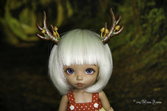 Moss & mushrooms deer antlers for tiny/yosd (AnnaZu) Tags: moss tiny pukifee ante antlers deer rheindeer mushrooms horns commissions doll fairyland balljointed bjd abjd polymer clay