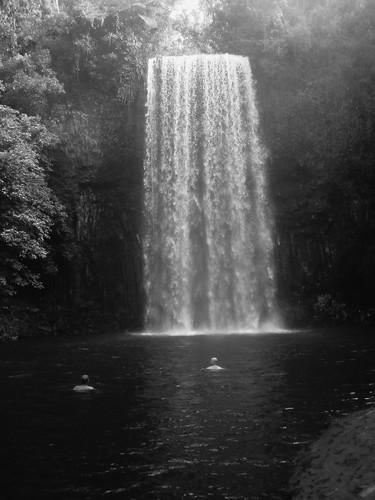 IMG_1639 Tarzan Movie