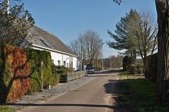 2019 België 0024 Achel (porochelt) Tags: achel belgië b limburg belgium belgien belgique bélgica