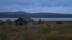 Lapland_Day2_Muonio_20180911_IMGS4799_s (Andrew-Holloway) Tags: lapland muonio autumn torassieppi