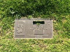 Jack Little Grave Plaque (Vax80) Tags: the forearm jolt over ropes jack little professional wrestling sport in australia ship channel nine network gtv9 mario milano spiros arion brute bernard skull murphy killer karl kox deceased person kowalski tv actor mark lewin sheik wadi ayoub