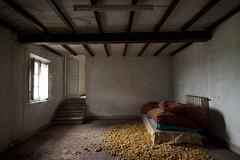 Briciole (Cristianella) Tags: fattoria abbandonata farmhouse abandoned letto bed mattress materasso