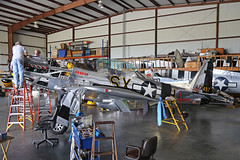 N51LW (474497 SX-H) North American TF-51D Mustang United States Air Force Colours 'Whitewhitch' Kissimmee Municipal 25th October 2018 (michael_hibbins) Tags: n51lw 474497 sxh north american tf51d mustang united states air force colours whitewhitch kissimmee municipal 25th october 2018 n america usa us untied