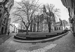 Durham Cathedral. . . (CWhatPhotos) Tags: cwhatphotos camera photographs photograph pics pictures pic picture image images foto fotos photography artistic that have which contain flickr olympus omd em10 mk ll ii mzuiko 8mm prime fisheye fish eye lens durham north east england uk river wear city centre water concrete structure cathedral foot path footpath walk iconic building