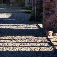 _DSC1490.jpg (Hideous Elf) Tags: abbey chruch detail grave lights melrose melroseabbey shadow stone