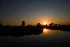 Sunset on the Okavango Delta in Botswana (Stephen Viszlai) Tags: sunset okavangodelta botswana africa adventure travel tourist sundowners colourful safari river