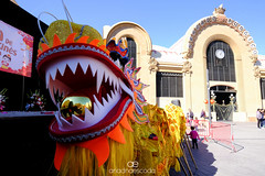 El nou any xinès | 2019 (Ariadna Escoda) Tags: campdetarragona catalonia catalunya tgn tarragona china chinese chineseyear cultura culture happynewyear mercat nature people tradition