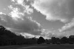 sandy (ababhastopographer) Tags: kyoto takaragaike winter afternoon sky cloud acros park graytones 京都 宝ヶ池 公園 冬 空 雲 粒子