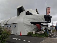 Corrugated iron sheepdog, Tirau, New Zealand (steverh) Tags: sheepdog corrugatediron tirau newzealand