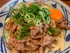 beef udon (Hideki Iba) Tags: food meal noodle beef egg iphone japan udon hyogo うどん 肉うどん