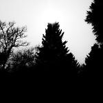 Light And Dark thumbnail