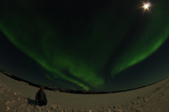 March Madness-141 (juan_guthrie) Tags: yellowknife nwt northernlights