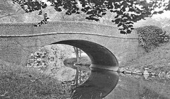Pebble Dash Bridge (StreetsofWashington) Tags: rockcreekpark pebbledashbridge broadbranchroad bridges washington washingtondc postcards