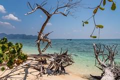 Koh Poda (grzegorzmielczarek) Tags: krabi aonang kohpoda thailand amphoemueangkrabi th