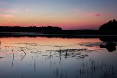 Schweden 08 319-1 (Andre56154) Tags: schweden08 schweden sweden sverige ufer see lake wasser water himmel sky sonnenuntergang sunset abendrot afterglow landschaft landscape