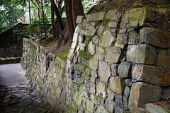 SDQ_1262 (koyaman3422) Tags: 京都 kyoto sigma sdquattro 1770mm 法然院