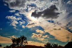 Sky with palms (Ghada Elchazly) Tags: sky egypt siwa sunset palmtree palms clouds ngc flickr colors colorsinourworld serenity