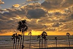 Sunset 18-2-6-19 (rod1691) Tags: sunset clouds oceanside california canon 50d palms beach surf