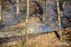 Waldbrand Niedergladbach 25.02.19 (Wiesbaden112.de) Tags: brand feuer feuerwehr flächenbrand löschen niedergladbach polizei polizeihubschrauber rtk rauch rettungsdienst rheingautaunuskreis schlangenbad steilhang stenzel vegetationsbrand wald waldbrand wiesbaden112 sst deutschland deu