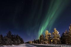Z19_0302 LT (Zoran Babich) Tags: winter snow lapland lappi finland suomi northernlights auroraborealis