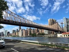 Ed Koch Gouldsboro Bridge (Non-native New Yorker) Tags: bridge newyork rooseveltisland eastriver