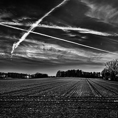 sundown and lines (MAICN) Tags: square quadratisch landscape landschaft nature himmel sundown mono linien sw natur clouds bw blackwhite monochrome schwarzweis sky sonnenuntergang einfarbig 2019 wolken lines