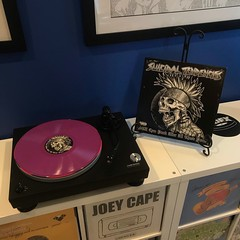 Cyco Punk (bandarji) Tags: coloredvinyl punk purple suicidaltendencies vinyl