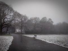 House (PumpkinSpiceLette) Tags: bench house park cold ice snow alone fog mist
