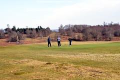 golf (photomaster22) Tags: golf golfers ball sport three men palyers people grass park trees sunny winter