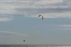 2018_08_15_0197 (EJ Bergin) Tags: sussex westsussex worthing beach seaside westworthing sea waves watersports kitesurfing kitesurfer seafront lewiscrathern