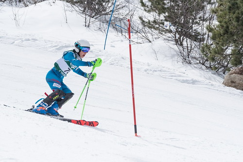 Alpine Races I & II 2019 3_59