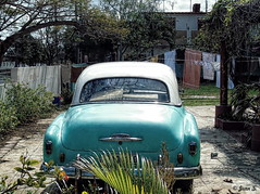 Backyard (Jean S..) Tags: backyard car old ancient clothes clothesline green white trees
