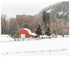 Mountain Barn (jesmo5) Tags: colorado landscape vallecito antique barn christmas cold country fence hills ice mountains old pinetrees postcard rural rustic snow trees vintage winter wintersnow wood woods