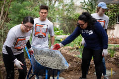 Alternative_Break_20190319_0140_1 (Sacramento State) Tags: sacramentostate sacstate californiastateuniversitysacramento universitycommunications hornets jessicavernone alternative break spring volunteer community engagement center solar house living building