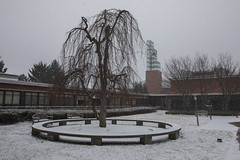 Winter scenes at Binghamton Universit (BinghamtonUniversity) Tags: 2019 buildingsandfacilties winter snow memorialcourtyard fineartsbuilding fa clock tower vestal ny usa