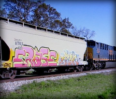 (timetomakethepasta) Tags: erase acer gns goonies freight train graffiti art grainer hopper atgx