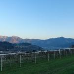 2019-03-29 03-31 Südtirol-Trentino 010 Susà thumbnail
