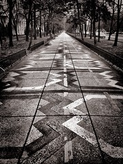 To infinity! (Oliver_D) Tags: alley pavement way monochrome perspective ornaments bucharest