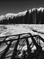 Shadows on the Bow (Edna Winti) Tags: ednawinti mountains ice snow winter alberta canmore bowriver shadows enginebridge