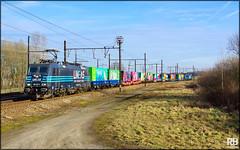 Lineas 186 293, Antwerpen (B) (CargoDriver) Tags: lineas your freight force 186 293 mortsel antwerpen noahs train 22031
