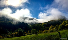 Ornans Valley View (Quentin CUVELIER) Tags: ifttt 500px scenic landscape hill rural scene fog valley d7000 nikon photography photographie photo quentin cuvelier fr french francais france franchecomte doubs ornans trees field sun clouds blue sky nature
