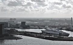 (Uno100) Tags: rotterdam maas ss ship building sky scraper line erasmus bridge brug monte video nh hotel willems grass glass art port