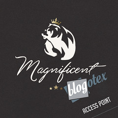 [MAGNIFICENT] LOOKING FOR BLOGGERS! (KmBAllen) Tags: