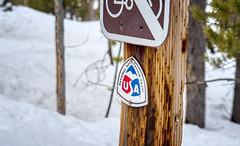 National Recreation Trail (Musgrove and the Pumi) Tags: nationalrecreationtrail redfishlake northernshore sawtoothnationalforest idaho id sawtoothnationalrecreationarea snow