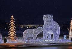Happy Christmas, friends! (janepesle) Tags: moscow russia illumination decoration city cityscape urban outdoors bear animals flight architecture new year christmas holiday