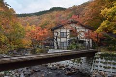 Aoni Onsen (Maitre Po) Tags: japon japan onsen aonionsen lampnoyado aomori koyo automne