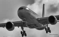 F-WTTN Airbus Industrie Airbus A330-941 MSN 1795 (Flox Papa) Tags: fwttn airbus industrie a330941 msn 1795 a330 941neo