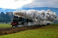 Treno a vapore in controluce (MaOrI1563) Tags: iltreninodellabefana iltrenodellabefana epifania befana treno trenoavapore firenze mugello sanpieroasieve vaglia pontassieve rufina contea sanbiagio 6gennaio 2017 6gennaio2017 toscana ffss sandetole maori1563
