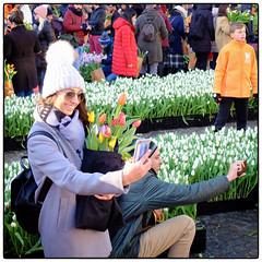 National Tulip Day (Kruijssen) Tags: tulips amsterdam fujifilm x 30 street sunny