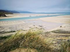 IMG_20190216_104643-01 (www.AlastairHumphreys.com) Tags: beach water sand cornwall estuary sky empty winter